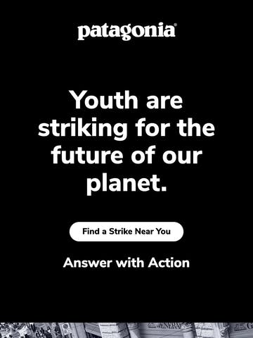 Strike for Climate Action Thumbnail Preview